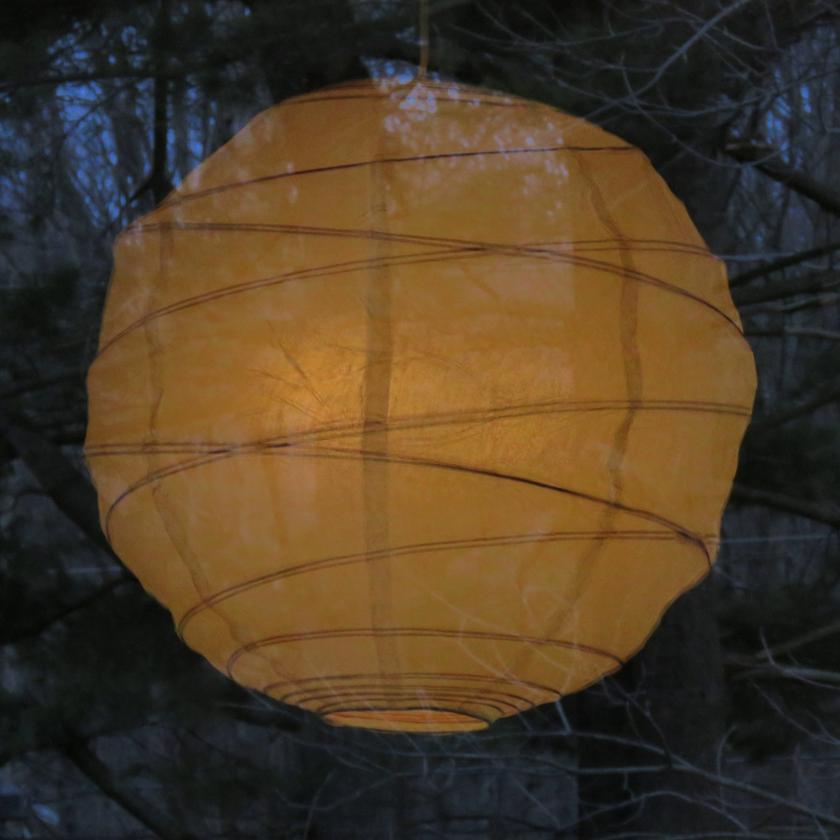 globe-pine-1_840x840