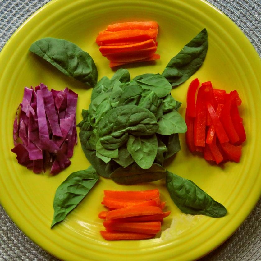 salad_ObRem_Y-10_840x840
