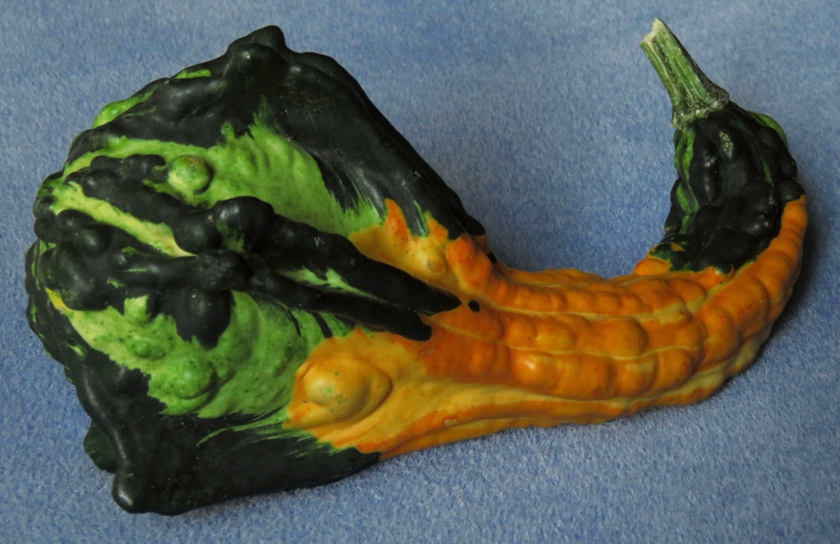 gourds-1#_840x544