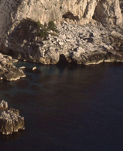 capri-grotto-vert_shrp+21_crop-tight_422x517