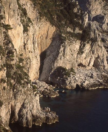 capri-grotto-vert_shrp+21_crop_420x517